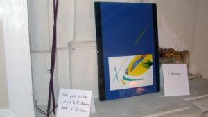 image4-exposition-les-lieux-de-notre-vie-2011-03-26-la-robinière-angouleme-france